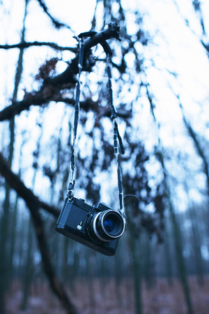Lost vintage camera hanging in tree in winter forest.