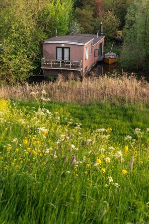Houseboat hidden between bushes in springtime.