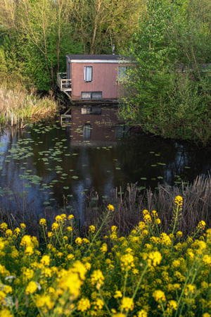 Houseboat hidden between bushes in springtime.