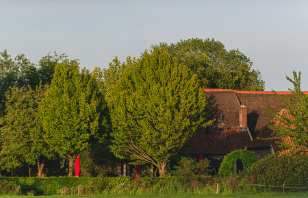 Farmhouse between trees in spring in evening sunlight.