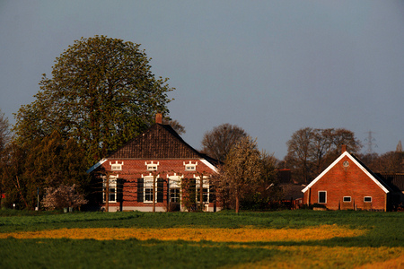 Old dutch farmhouse with barn in evening sunlight in early spring. Stock Photo