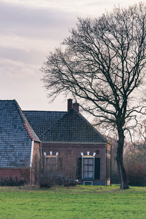 Old dutch farmhouse with bare tree and cloudy sky.
