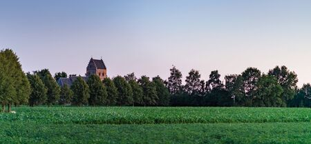 Historic church tower above trees in dutch rural village.