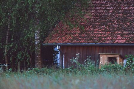 Wooden barn and rabbit cage in bushy countryside. Фото со стока