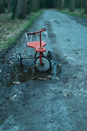 Abandoned tricycle in puddle on dirt road in forest.
