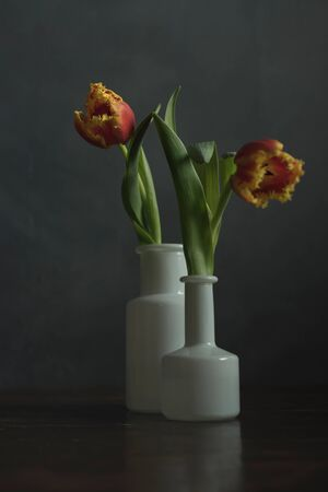Two white glass vases with red yellow flame tulips on wooden table. Stockfoto