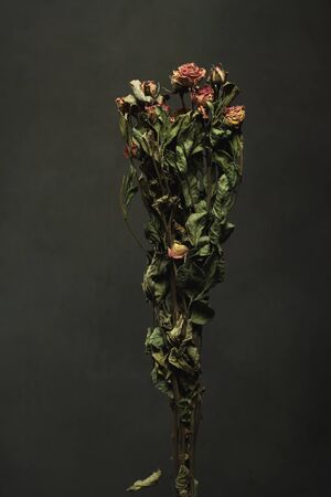 Bouquet of dried little pink roses in front of a grey wall.