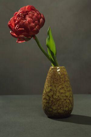 Red flower in a green vintage vase in a grey room.