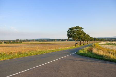 Asphalt road in a rural summer landscape Stock Photo
