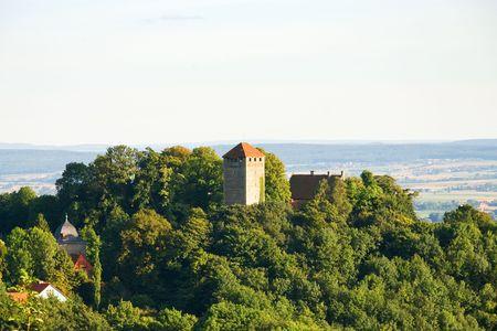Oud kasteel in een bos op de heuvel