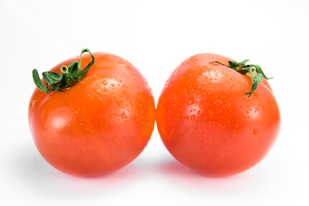 two red ripe tomatoes side by side on a white background photo