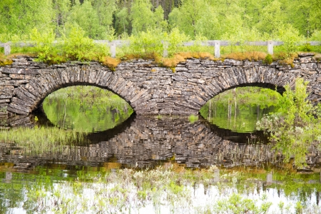 tunneling: old overgrown  stonebridge with trees all around