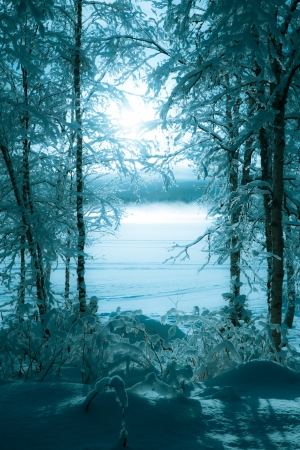 Winter image taken from the land out over the icy, snowy and foggy lake Stock Photo - 17853242