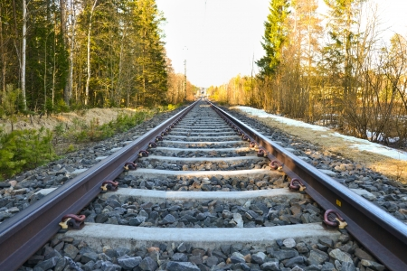 straight railway track with forest on the side Stock Photo