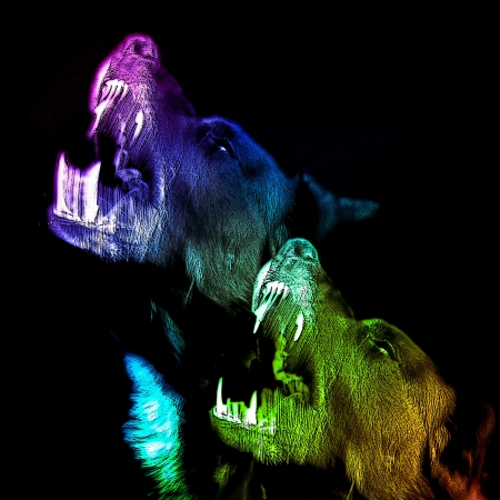 two howling dogs in multiple colors on a black background