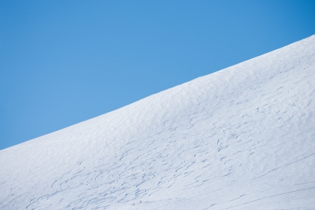 treeline: clear winter day with blue sky and a hill where you can see ski trails