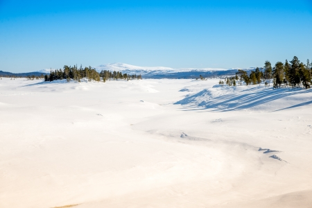 unspoiled: winter view of unspoiled nature with lots of snow