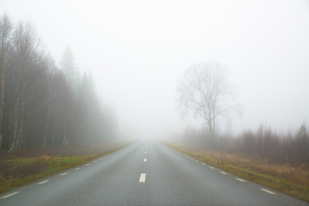 road in fog with trees alongside Stock Photo