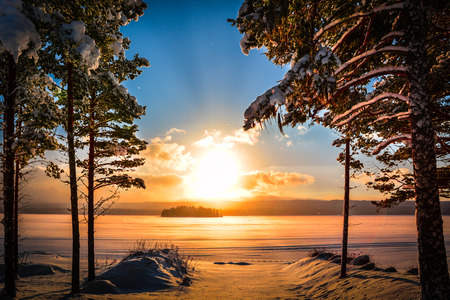 Sunset in Sweden with a lake and pine trees in the foreground