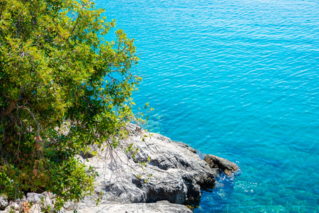 lucid: crystal clear mediterranean sea with rocky beach and green trees