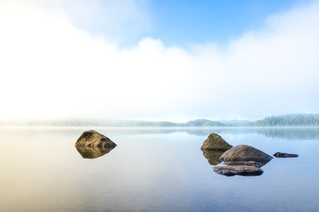 forest jungle: Early and harmonious morning with fog over the lake in northern Sweden Stock Photo