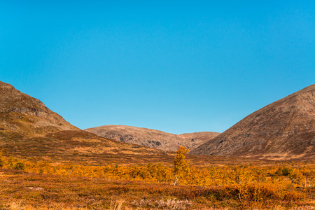 copys pace: beautiful autumn picture from the mountains of northern Sweden Stock Photo