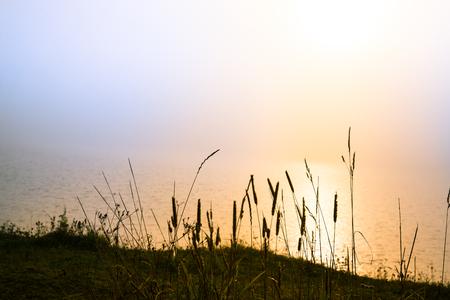 jezior: Magiczne światło słońca nad jeziorem jednej porannych w północnej Europie