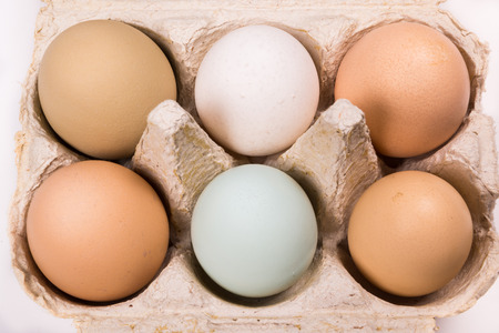 egg box: close-up of six eggs in different colors and sizes in an egg box on a white background