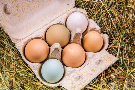 Six-pack of eggs in different colors and sizes in a cardboard box standing on hay Stock Photo