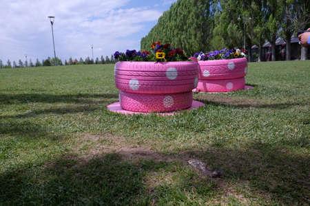 pink color car tire flower bed Banque d'images