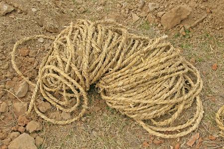 bundling: Straw rope