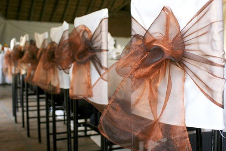 Row of chairs with white covers and bronze organza bows