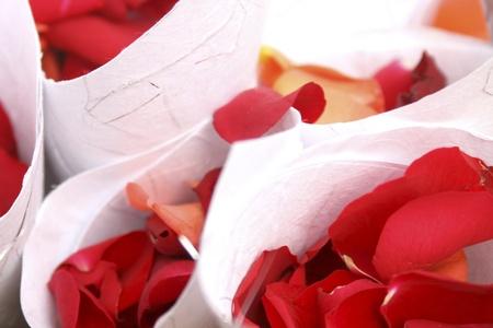 fresh red rose petal confetti