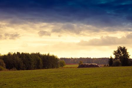 masuria: Wood pile on the meadow. Summer landscape - Masuria, Poland.