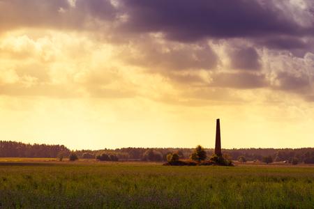masuria: Old chimney hidden in a field of alfalfa. Masuria, Poland.
