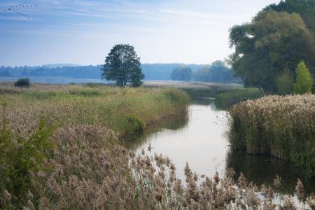 estuary: Elk River estuary to the Lake Haleckie. Masuria, Poland. Stock Photo