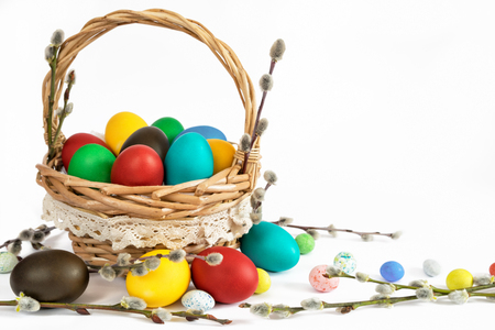 catkins: Basket with easter eggs and catkins  on white background