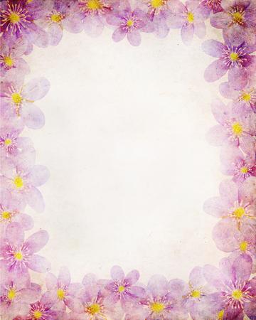 liverwort: vintage paper textures with floral frame. Liverwort (hepatica nobilis)