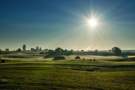 dewy: The morning sun illuminates the dewy meadow Summer landscape. Masuria, Poland.