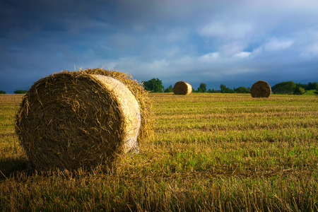 Haystack on a field of stubble. August countryside landscape. Masuria, Poland.