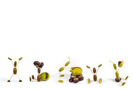 fellows: Acorn fellows on white  background. Autumn raster illustration.
