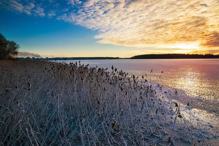 Sun sets over frozen rushes of  Lake Elckie. Masuria. Poland.