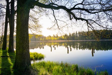 Quiet lake -  spring landscape. Masuria, Poland.
