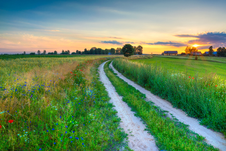 Summer landscape with country road and fields of wheat. Masuria, Poland. HDR image. Stock Photo