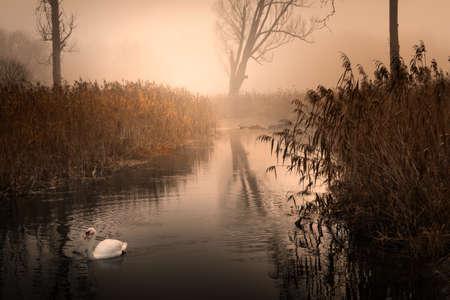 Misty river EÅ'k in autumn.