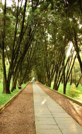 route de marche dans le parc de d�tente