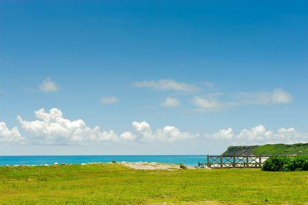 coast line with grass and blue sky