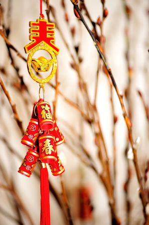 decorative firecracker with background of gingko branch  in chinese new year