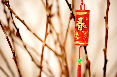 P�tard d�coratif avec fond de gingko branche dans le nouvel an chinois