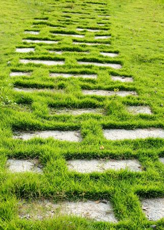path with green grass in the park